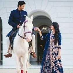 Parekh Meera