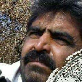 રામભાઇ બી ભાદરકા