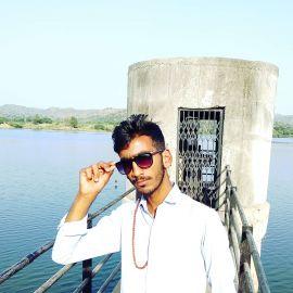 Narayan Desai