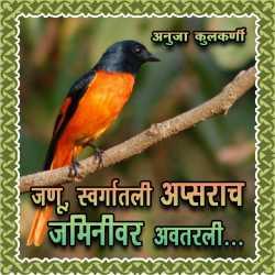 Jannu, Swargatali Apsarach Jaminivar Avtarli... by Anuja Kulkarni in Marathi