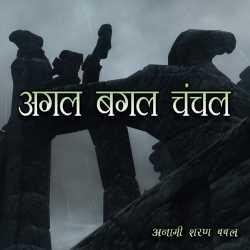 Agal Bagal Chanchal by Anami Sharan Babal in Hindi