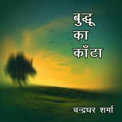 Buddhu ka Kanta by Anami Sharan Babal in Hindi