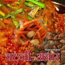 चटनी-अचार बुक MB (Official) द्वारा प्रकाशित हिंदी में