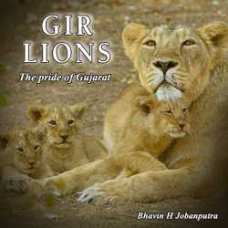 Pride of Gujarat -Gir lions by Bhavin H Jobanputra in English