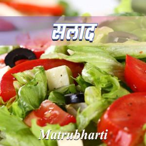 सलाद बुक MB (Official) द्वारा प्रकाशित हिंदी में