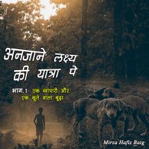 अनजाने लक्ष्य की यात्रा पे by Mirza Hafiz Baig in Hindi