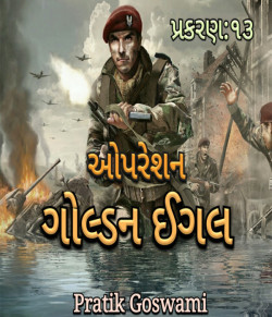 operation golden eagle - 13 by Pratik D. Goswami in Gujarati