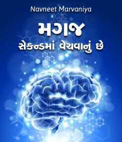 Magaj Second ma venchvanu chhe by Navneet Marvaniya in Gujarati