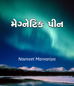 Magnet Pin by Navneet Marvaniya in Gujarati