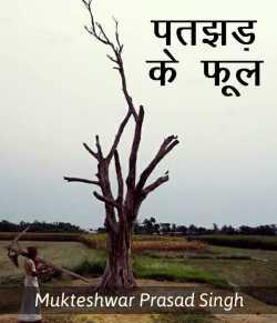 Patjhad ke phool by Mukteshwar Prasad Singh in Hindi