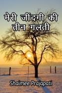 मेरी जींदगी की तीन गलती बुक Shaimee oza Lafj द्वारा प्रकाशित हिंदी में