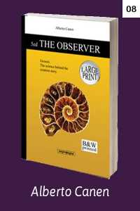 The observer of Genesis - THE OBSERVER. Contemplating creation. Chapter 8
