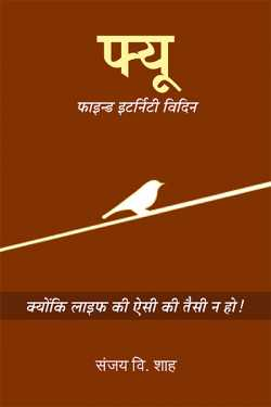 FEW- Find Eternity Within By Sanjay V Shah in Hindi