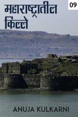 34. Maharashtratil kille - 9 by Anuja Kulkarni in Marathi