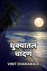 धुक्यातलं चांदणं....  by vinit Dhanawade in Marathi