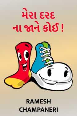 MERA DARAD NA JANE KOI by Ramesh Champaneri in Gujarati