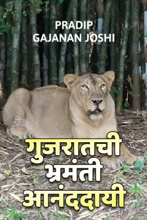 गुजरातची भ्रमंती आनंददायी मराठीत Pradip gajanan joshi