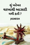 Shu Kharekhar Charkha thi Azadi mali hati by Jignesh in Gujarati