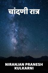 चांदणी रात्र  द्वारा Niranjan Pranesh Kulkarni in Marathi