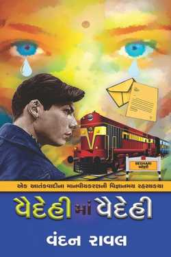 Vaidehima Vaidehi By Vandan Raval in Gujarati