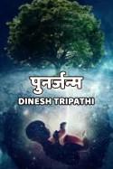 Punarjanm by Dinesh Tripathi in Hindi