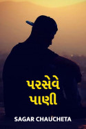 Parseve Pani by sagar chaucheta in Gujarati
