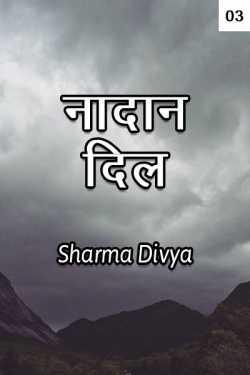 Nadan Dil - 3 by Divya Sharma in Hindi