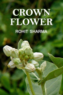 CROWN FLOWER by Rohit Sharma in English