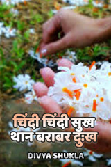 चिंदी चिंदी सुख थान बराबर दुःख  by Divya Shukla in Hindi