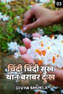चिंदी चिंदी सुख थान बराबर दुःख - 3 बुक Divya Shukla द्वारा प्रकाशित हिंदी में