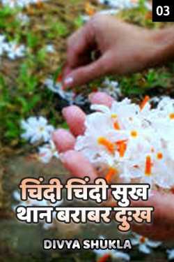 Chindi Chindi sukh thaan barabar dukh - 3 by Divya Shukla in Hindi
