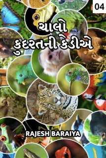 rajesh baraiya દ્વારા ચાલો કુદરતની કેડીએ - 4 ગુજરાતીમાં
