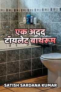 एक अदद टॉयलेट बाथरूम