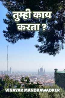 तुम्ही काय करता? मराठीत vinayak mandrawadker