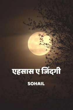 Zindagi ke ehsaas - 1 by Sohail in Hindi