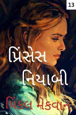 Prinses Niyabi - 13 by pinkal macwan in Gujarati