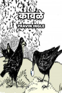 कावळे... मराठीत Pravin Ingle
