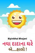 Bipinbhai Bhojani દ્વારા નવા  દાદા ના ઘરે એ ....હાલો !! ગુજરાતીમાં