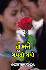 તું મને ગમતો થયો  by Amit vadgama in Gujarati