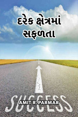 દરેક ક્ષેત્રમાં સફળતા  by Amit R Parmar in Gujarati