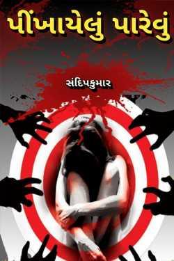 pinkhayelu parevu by Sandip Kumar in Gujarati