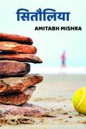 सितौलिया बुक Amitabh Mishra द्वारा प्रकाशित हिंदी में