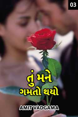 tu mane gamto tahyo - 3 by Amit vadgama in Gujarati