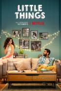 लिटल थिंग्स - रिव्यू: बुक Nish द्वारा प्रकाशित हिंदी में