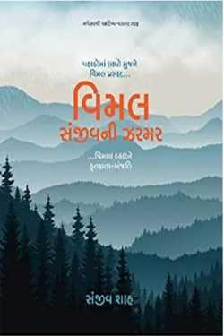 VIMAL-SANJIVNI ZARMAR by Jagruti Vakil in Gujarati