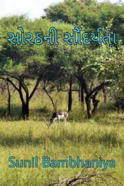 sorathni sundarta by Sunil Bambhaniya in Gujarati