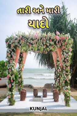tari ane mari yado by કુંજલ in Gujarati