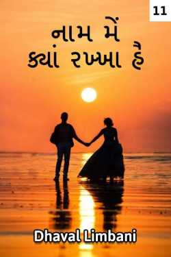 naam me kya rakkha hai - 11 by Dhaval Limbani in Gujarati