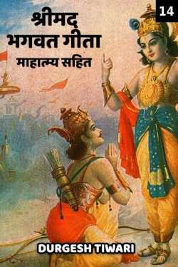 Shree maddgvatgeeta mahatmay sahit - 14 by Durgesh Tiwari in Hindi