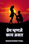 प्रेम म्हणजे काय असत ...... by Bhagyshree Pisal in Marathi